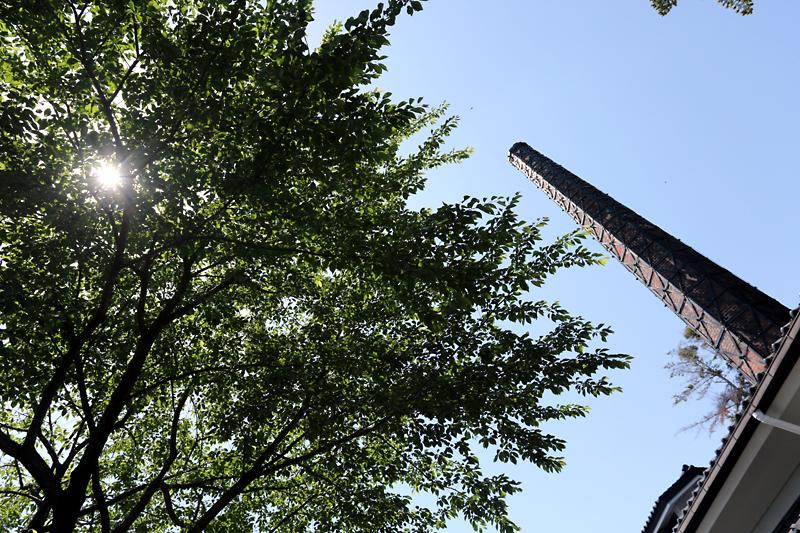 新緑と煙突